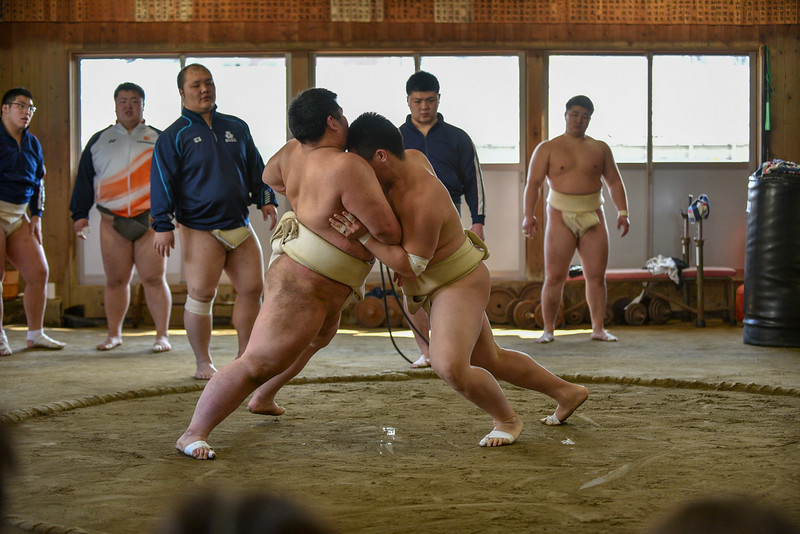 Gr.2 Nodai Sumo-1076.jpg