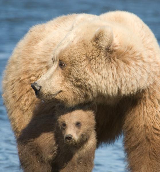 Alaska-349-Edit.jpg