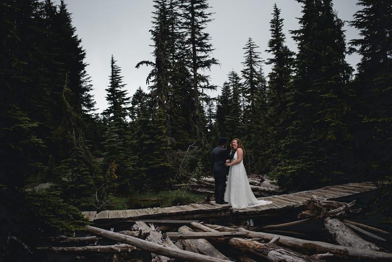 Travel Adventure Wedding Photographer - Mt Rainier - Rose-15.jpg