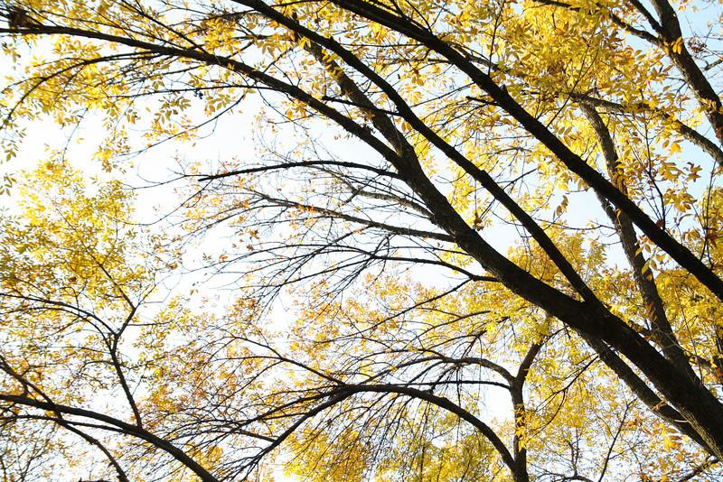 Fall Break 23-215.jpg