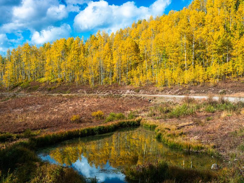 Kebler Pass Colorado Fall Colors Fine Art Landscape Nature Photography Fuji GFX100  Elliot McGucken Fine Art Landscape Nature Photography Prints & Wall Art
