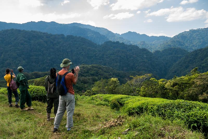 Nyugwe-Rwanda-11.jpg
