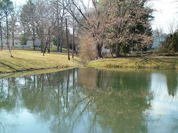 Woodbrook pond