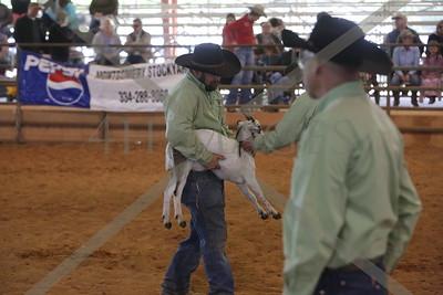 SR Goat Tying