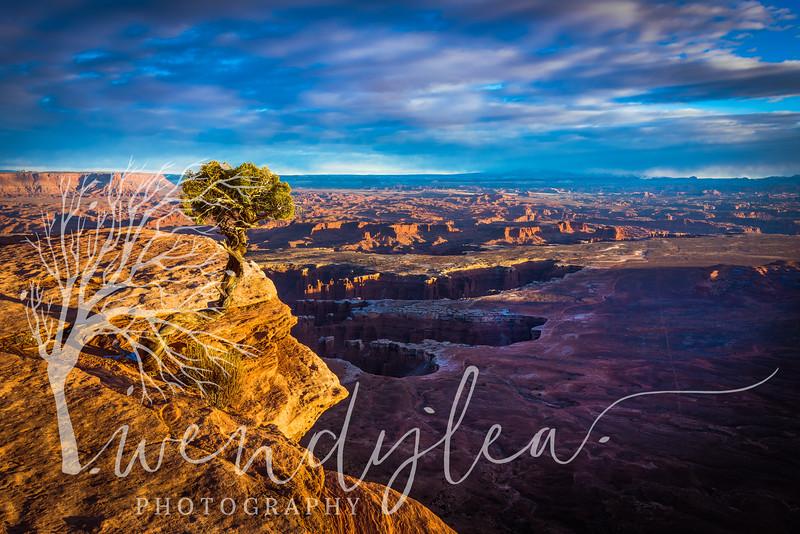 wlc so. Utah trip Jan 182032018-Edit.jpg