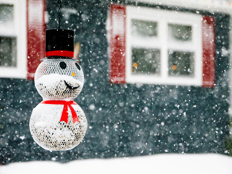 Let it Snow Heavy Snow.