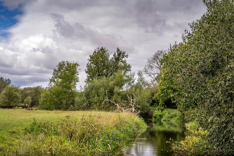 Wineham_Z6-0616.jpg