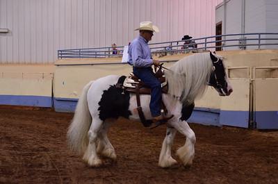 Open Western Horsemanship
