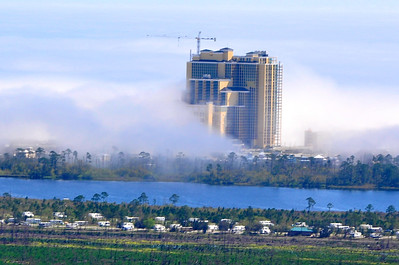 Gulf Coast Fog