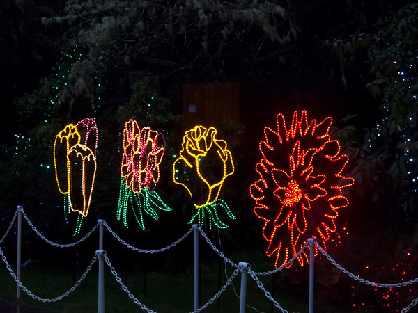 Annual Christmas Displays