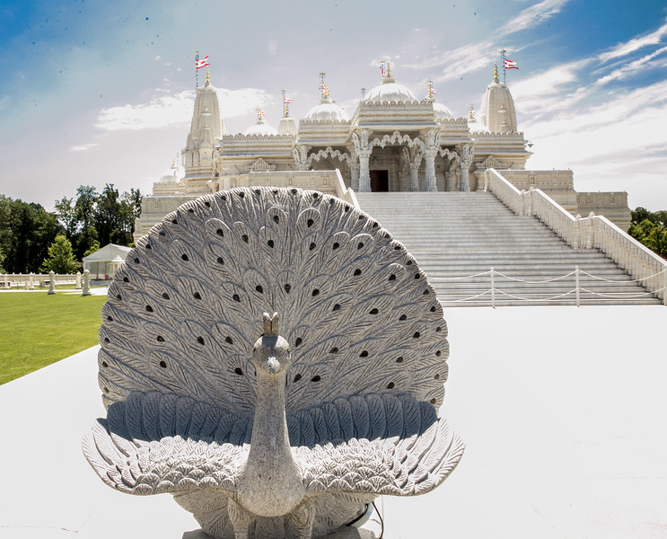 The Hindu Temple BAPS Shri Swaminarayan Mandir in Lilburn.  Peacocks in Hindu faith are connected with a deity representing benevolence, patience, kindness, compassion and knowledge.  Construction and architecture of the intricate buildings are exclusively stone and based on specific measurements from ancient text, no nails, rebarb, etc.  The hand carved limestone, marble and sandstone pieces were carved in India and assembled, similar to a puzzle, in Lilburn 10 years ago.  Local and international Hindus have volunteered more than a million hours of service, making the 17 months of construction a record for the structures.
