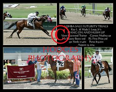 2014 Quarter Horse Season