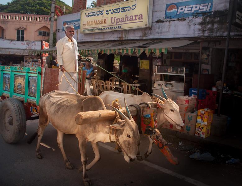Maddur Street Life