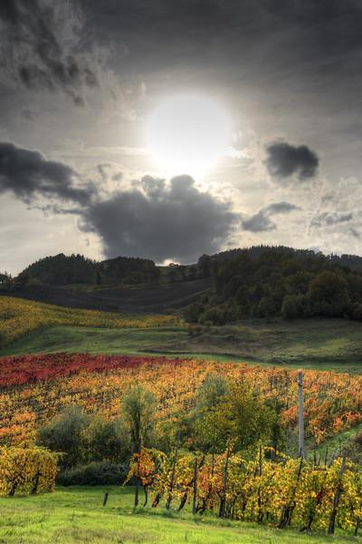 Autumn - Bettola, Vezzano sul Crostolo, Reggio Emilia, Italy - October 29, 2013