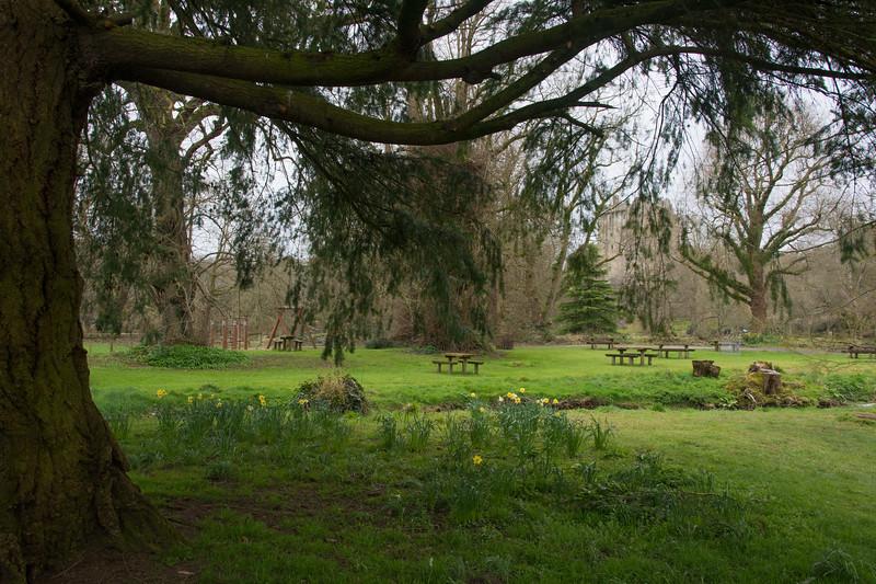 blarney-castle-2.jpg