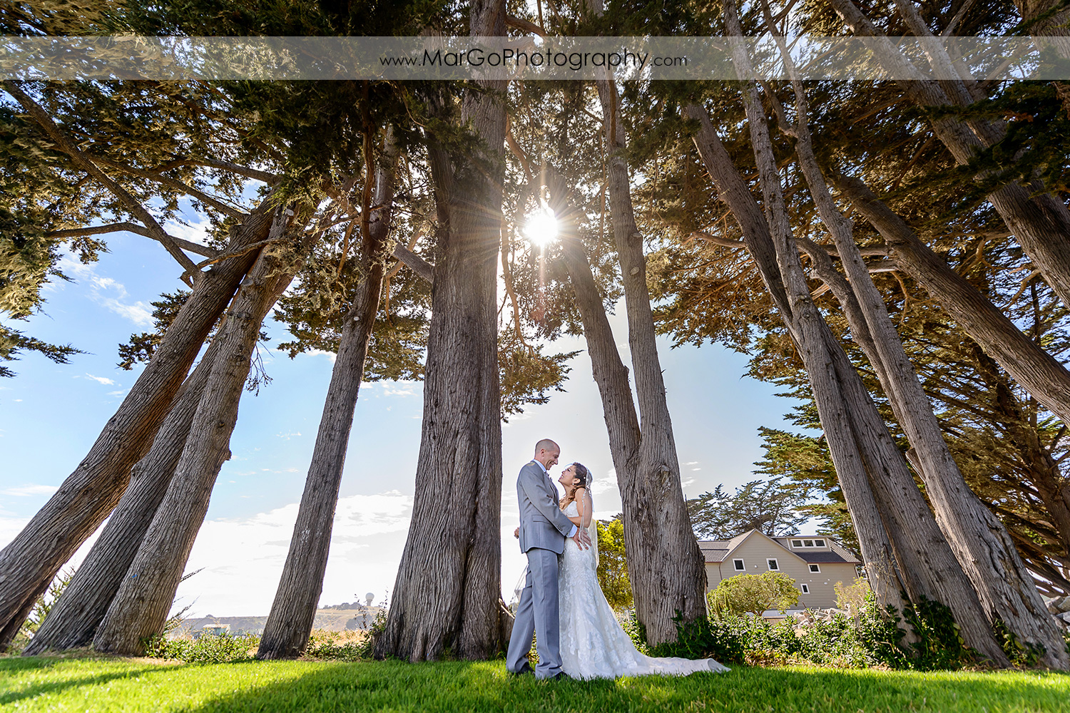 bride and groom in the trees at Mavericks Event Center in Half Moon Bay