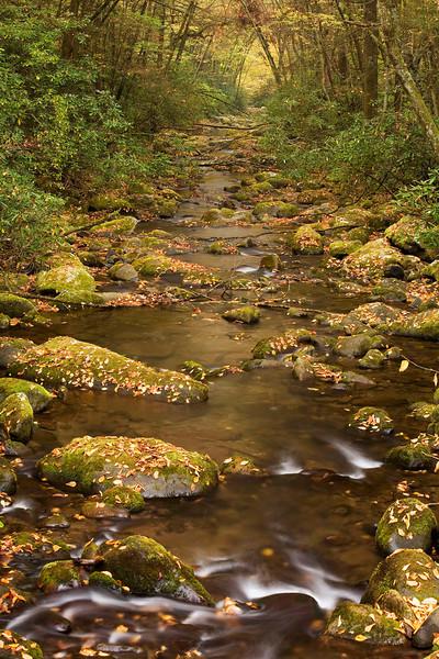 stream from bridge fall.jpg