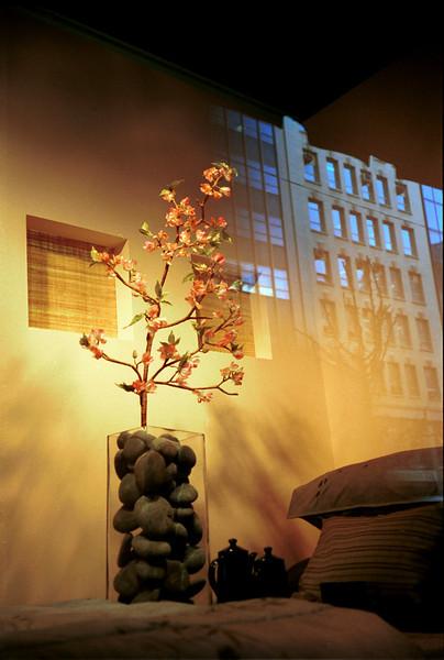 20 NYC Shuichi windowflower (R).jpg