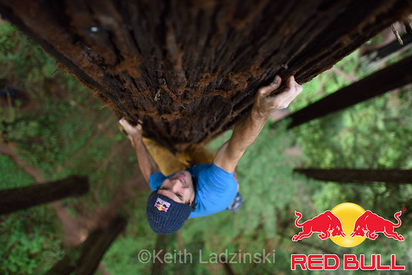 Red Bull Giant Ascent