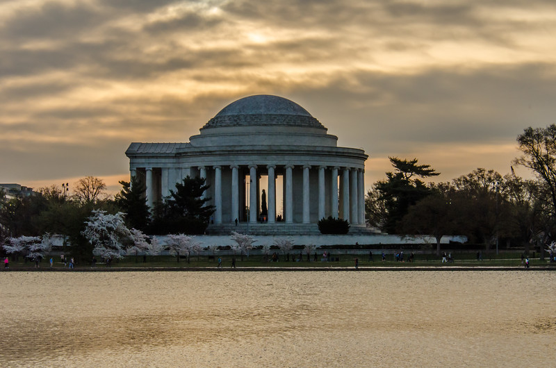 Cherry Blossom Tidal Basin Early Morning -22.jpg