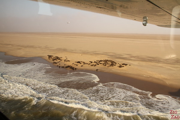 Flying over seal colonies, Namibia