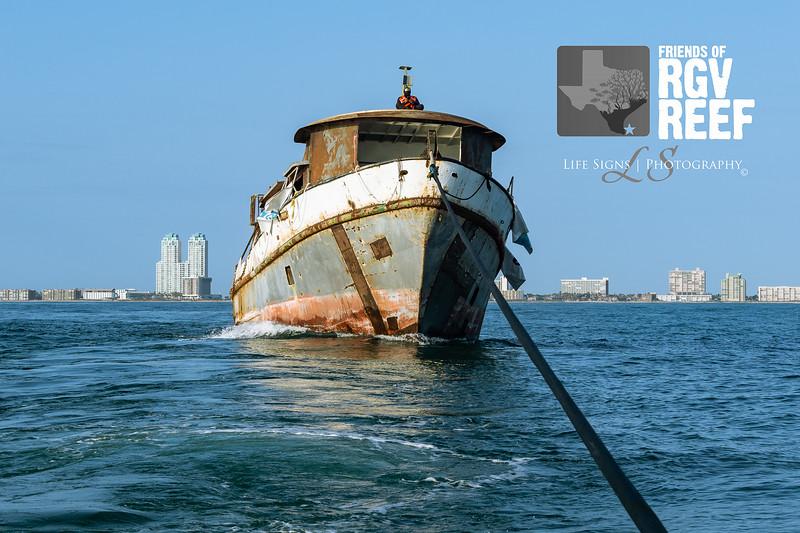 LS - People - RGV Reef-4.jpg