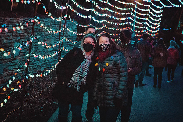 Zoo Christmas Lights 2020