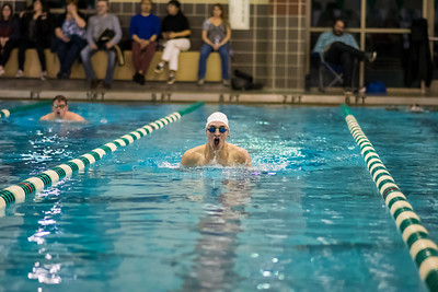 Swimming: Heritage, Loudoun Valley by Derrick Jerry on February 1, 2020