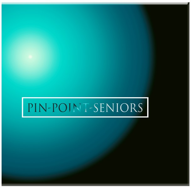 Pin-Point-Seniors