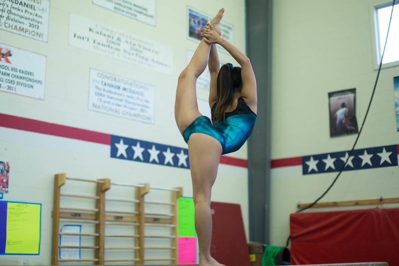 kauai-gymnastics-1.jpg