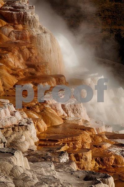YNP Canary Springs  4362_HDR.jpg