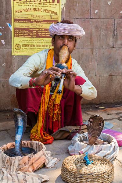India-364.jpg