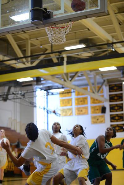 20140208_MCC Basketball_0158.JPG