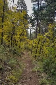2021-10-23 Yeager Loop Mingus Mountain