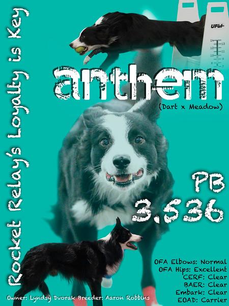 Anthem Stud Card