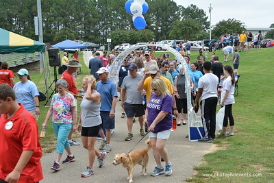 AFSP Out of the Darkness Walk FV