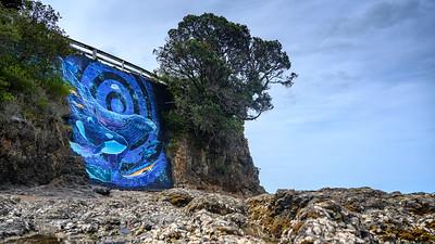 Beaches of New Zealand