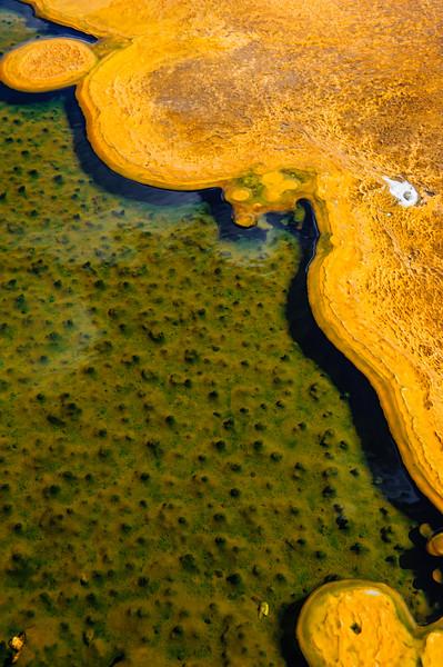 20130816-18 Yellowstone 191.jpg