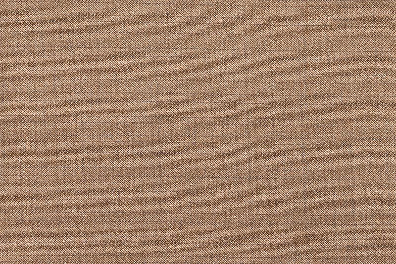 crop-7485.jpg