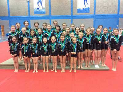 RS1449122 Gymnastics