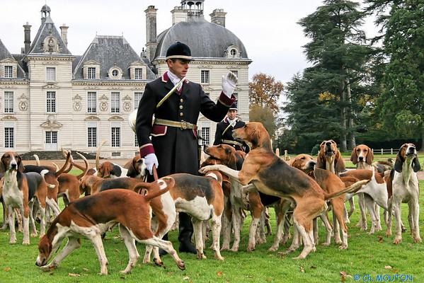 Chateau de Cheverny - Les Piqueux