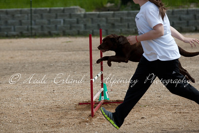 BLAST ASCA - Jumpers R1 Novice - Saturday 05/19/12