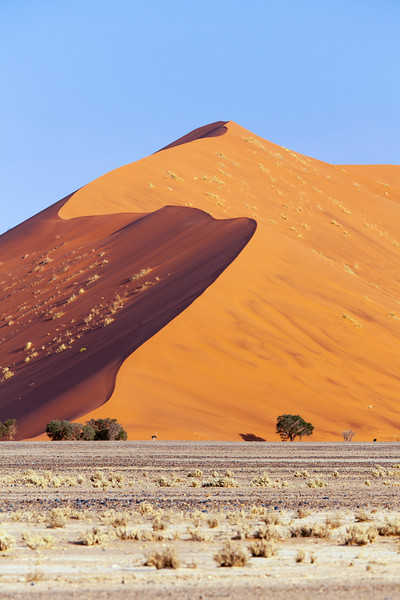Namibia-39.jpg