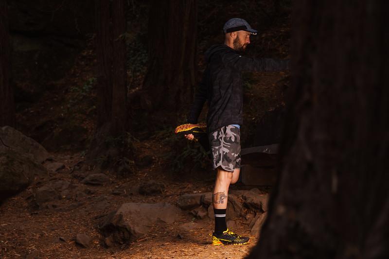 DT_redwoods_Jussioksanen_edited-1298.jpg
