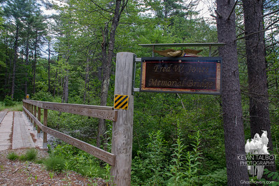 Ossipee Pine Barrens/Jackman Ridge 7-3-17