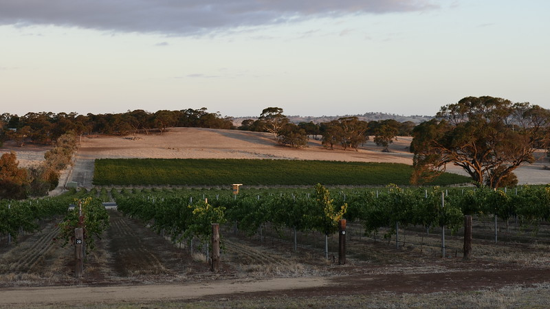 2019 Feb. 12 & 13th Barossa Valley