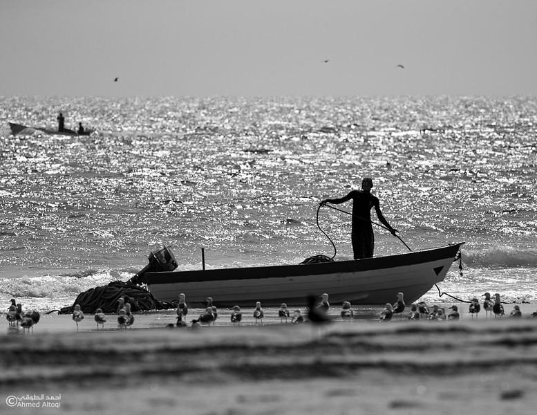 Sardine Season (107)- Dhofar.jpg