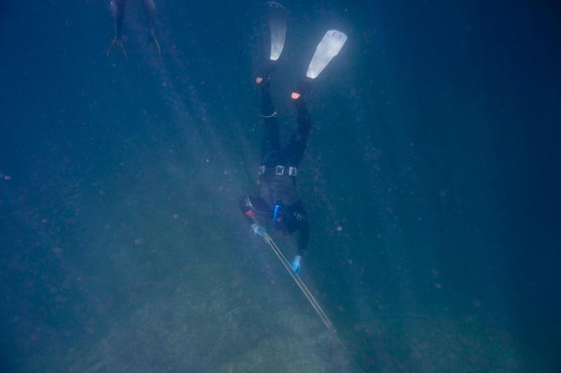 20090420_Underwater_Mexico_0291.jpg