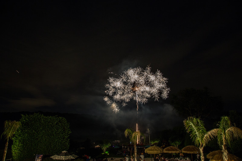7-2-2016 4th of July Party 0934.JPG