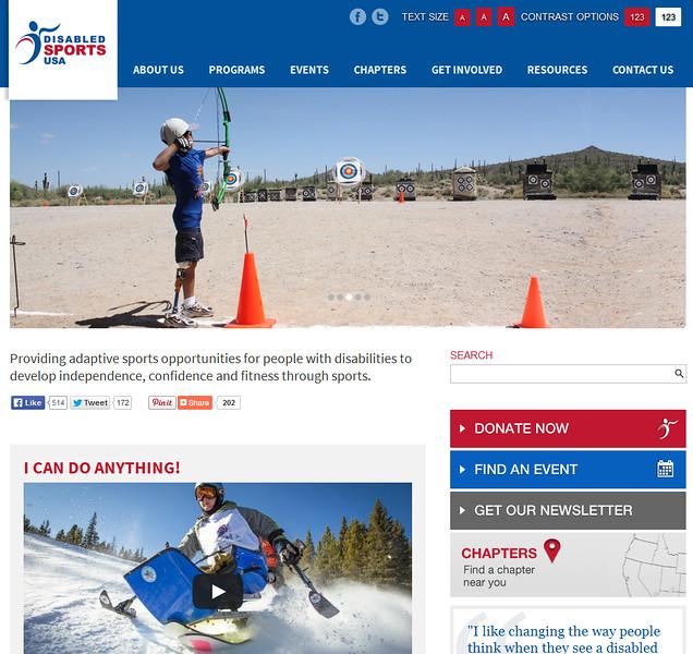 DSUSA Home Page.jpg